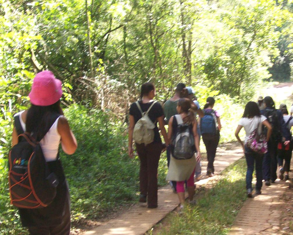 Foto 5. Grupo de alunos em trecho coberto por vegetação nativa da Mata Atlântica.